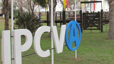 Photo of El IPCVA lanzó nuevos cursos virtuales para estar al día con los últimos conocimientos ganaderos