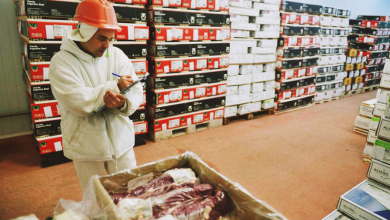Photo of Destacan oportunidades para exportar carne a EEUU