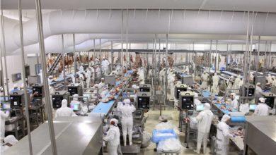 Photo of Carnes: crecen exportaciones y cae el consumo